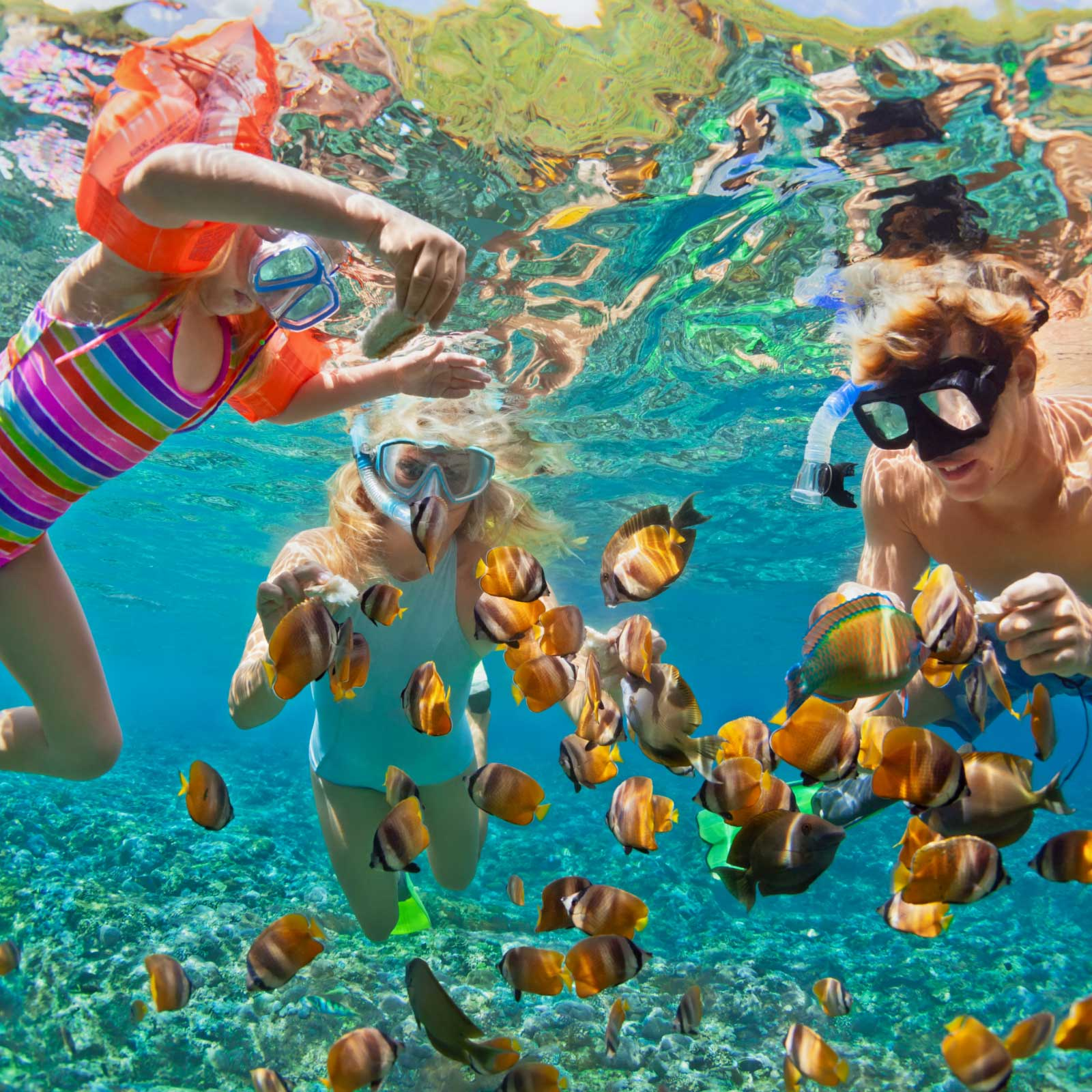 Optional Excursions - Innovations in Psychotherapy Cancun 2022