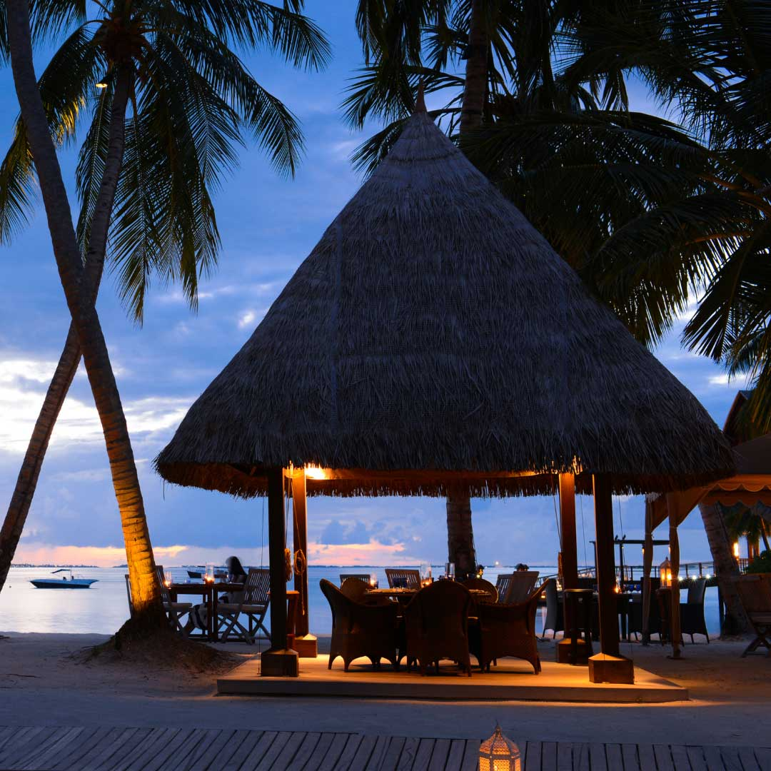 Paradise Perks - Innovations in Psychotherapy Cancun 2022